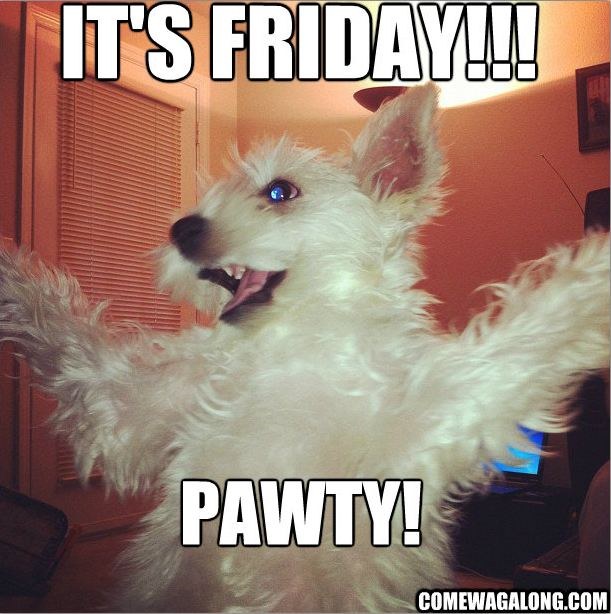 1000+ images about TGIF on Pinterest  Tgif, Happy Friday and Thank
