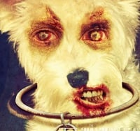 Dead Yourself - Simba the Scary Schnauzer - The Walking Dead feature