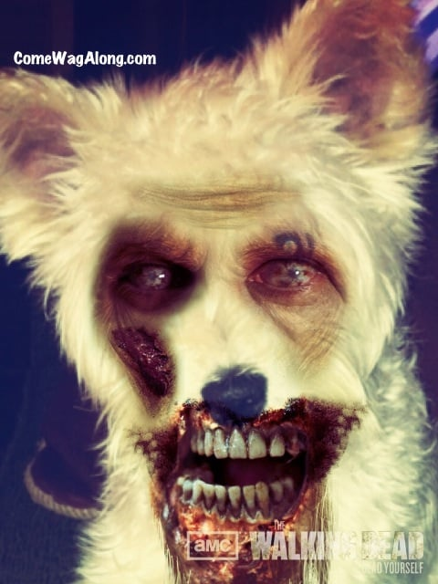 The Walking Dead - Dead Yourself