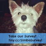 Come Wag Along Survey