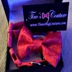 Tino's Dog Couture - Dog Bow Ties - Rouge Bow Tie and Collar Set ft
