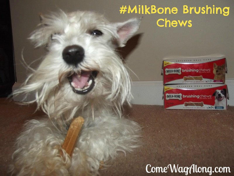 New Milk-Bone Brushing Chews