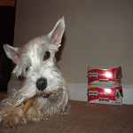 milk-bone giveaway ft