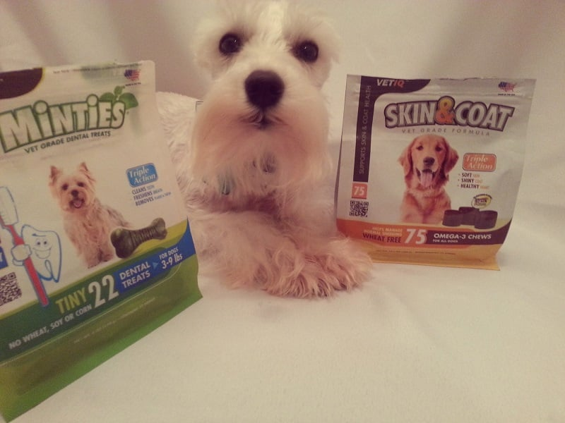 Vetiq Minties And Skin Amp Coat Product Review Come Wag Along