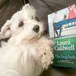 The Dog Park by Laura Caldwell - Simba Looking at Book - ft