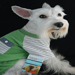 National Dress Up Your Pets Day - Martha Stewart Pets Spring Line - Striped Pocket Tee ft