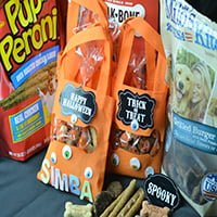 DIY Hallowen Treat Bag ft