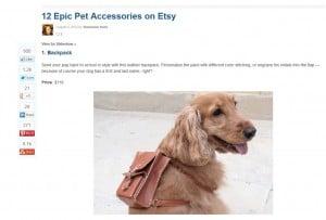 Pet Accessories. Dog Accessories.