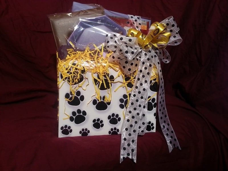 CESAR Canine Cuisine Savory Delights Gift Basket