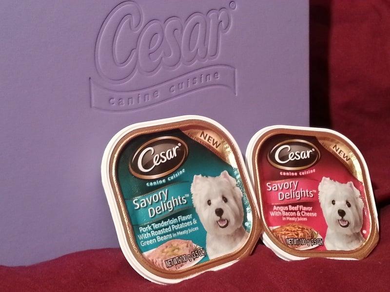 CESAR Savory Delights
