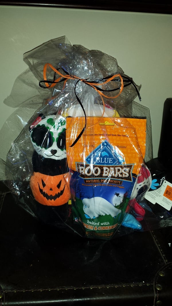 PetSmart Halloween Items