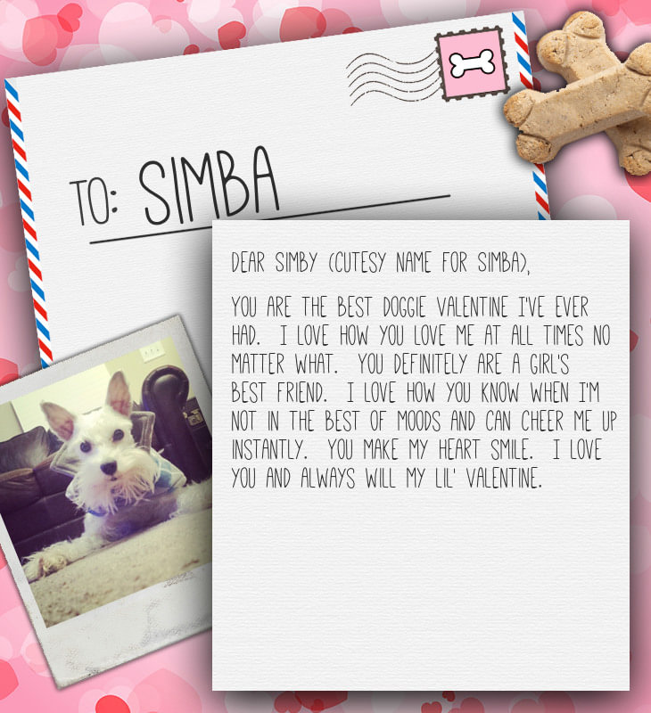 A Letter to My Dog on Valentines Day  Come Wag Along