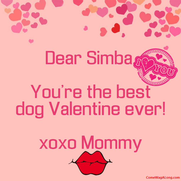 Valentines Day Letter to Your Dog