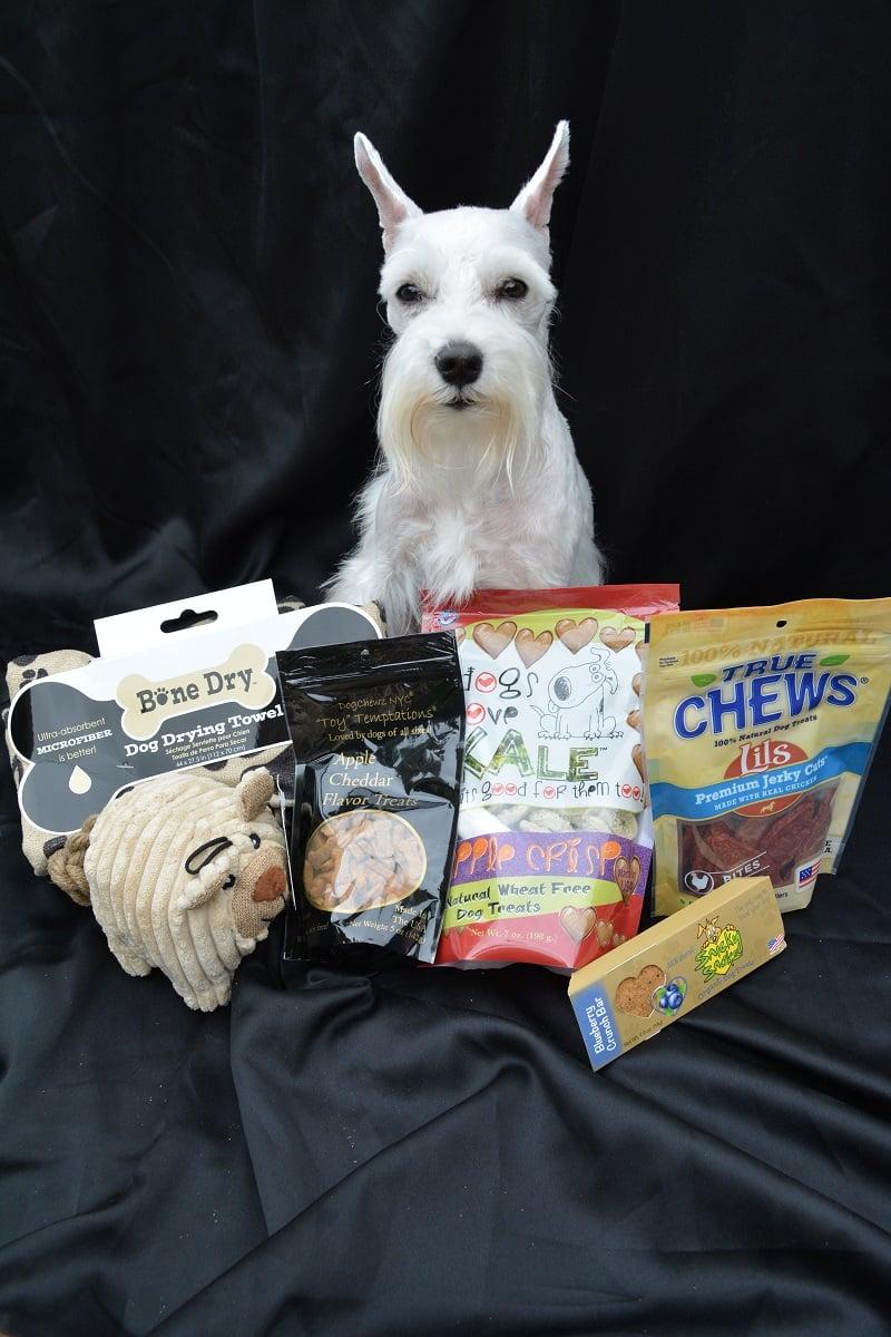 Furry Friends Club Dog Subscription Box