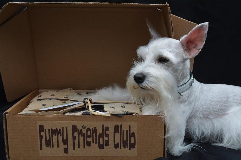 FFC Pet Subscription Box