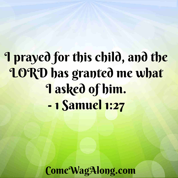 I prayed for this child and the Lord has granted what I asked of him Quote