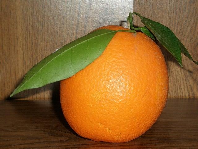 Baby Size of Navel Orange