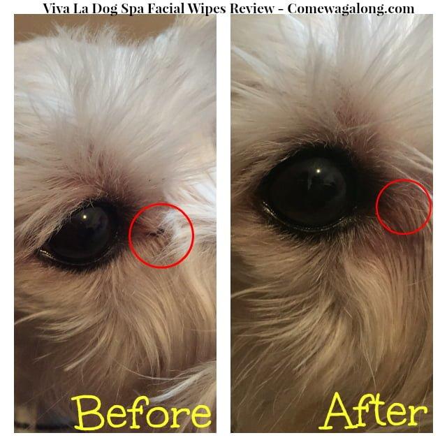 Viva La Dog Spa Dog Facial Wipes Before After