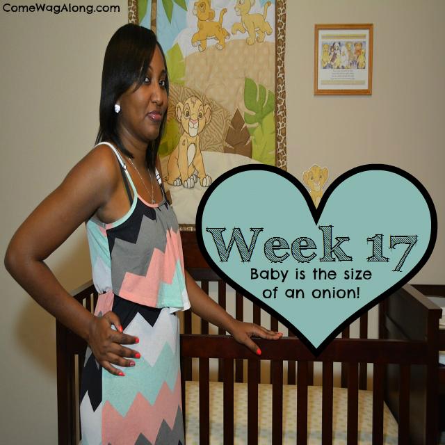 baby bump photo week 17