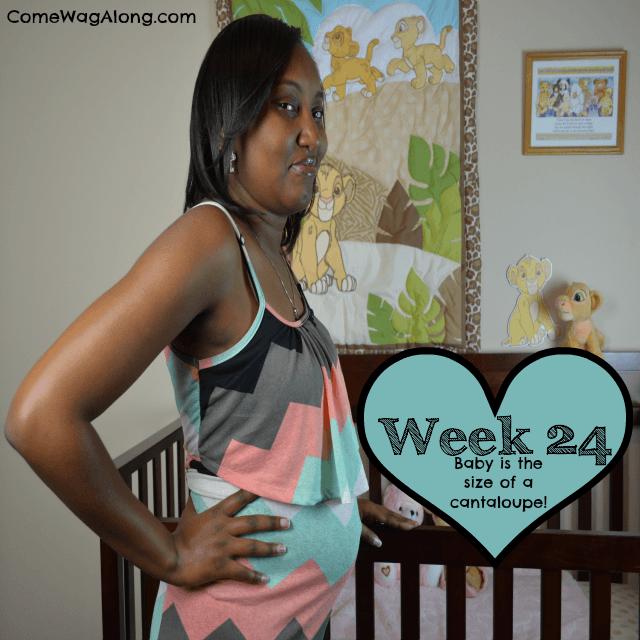 baby bump week 24
