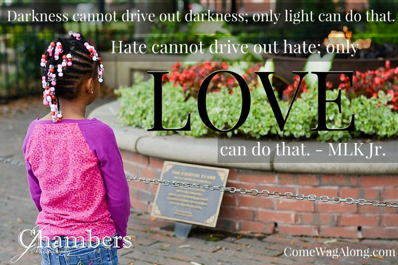 Hate cannot drive out hate - MLK Jr quote