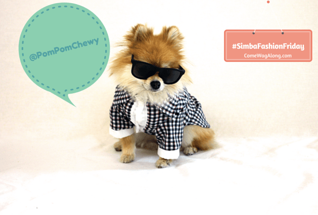 Simba Fashion Friday - Pom Pom Chewy