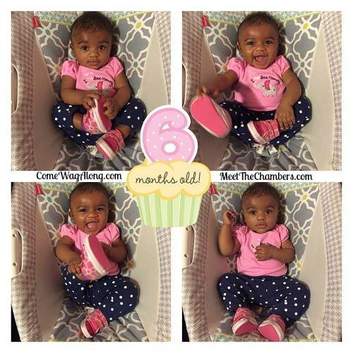 Baby 6 Month Milestones