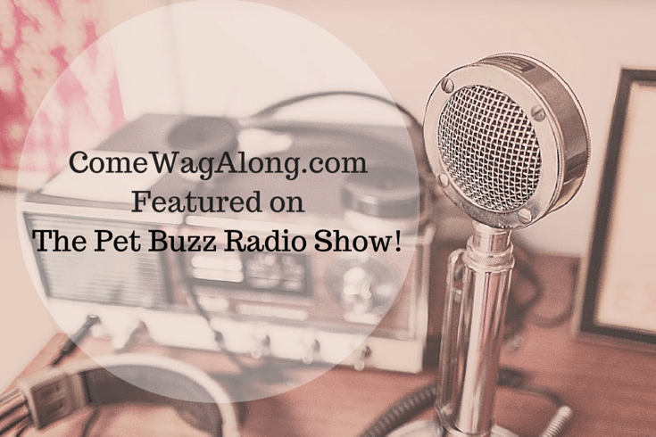Come Wag Along Featured on The Pet Buzz Radio Show