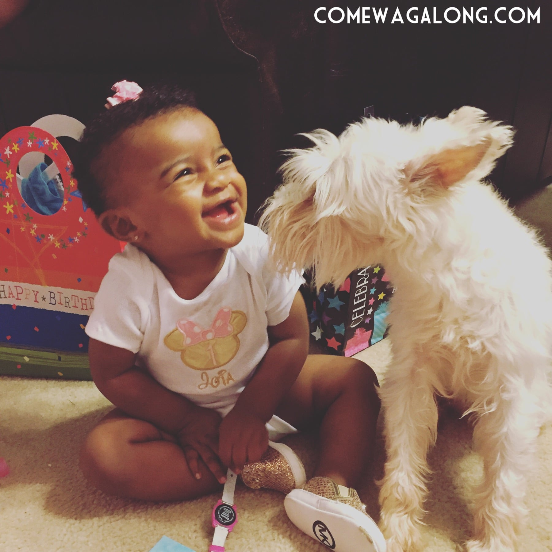 Baby and dog celebrate first birthday - ComeWagAlong.com