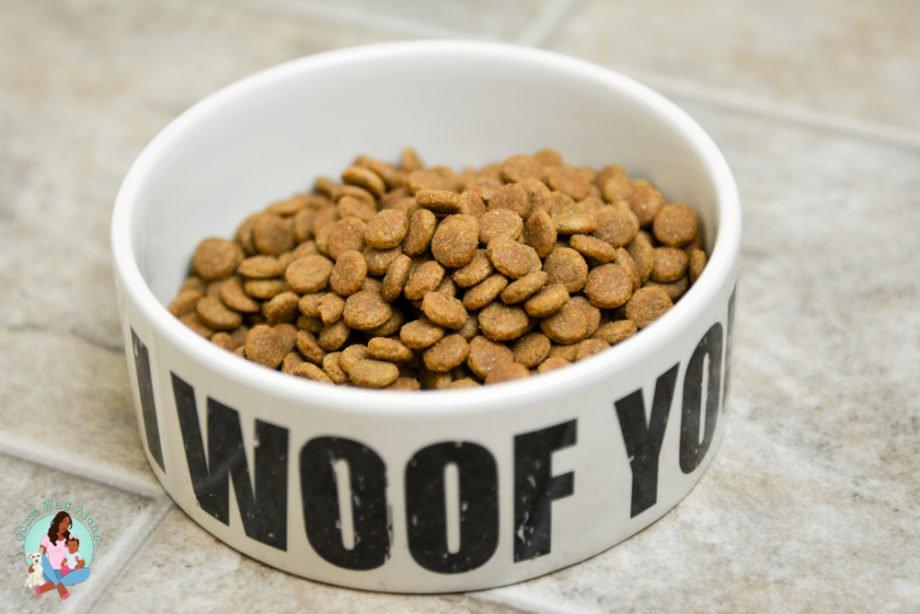 organic dog food organix