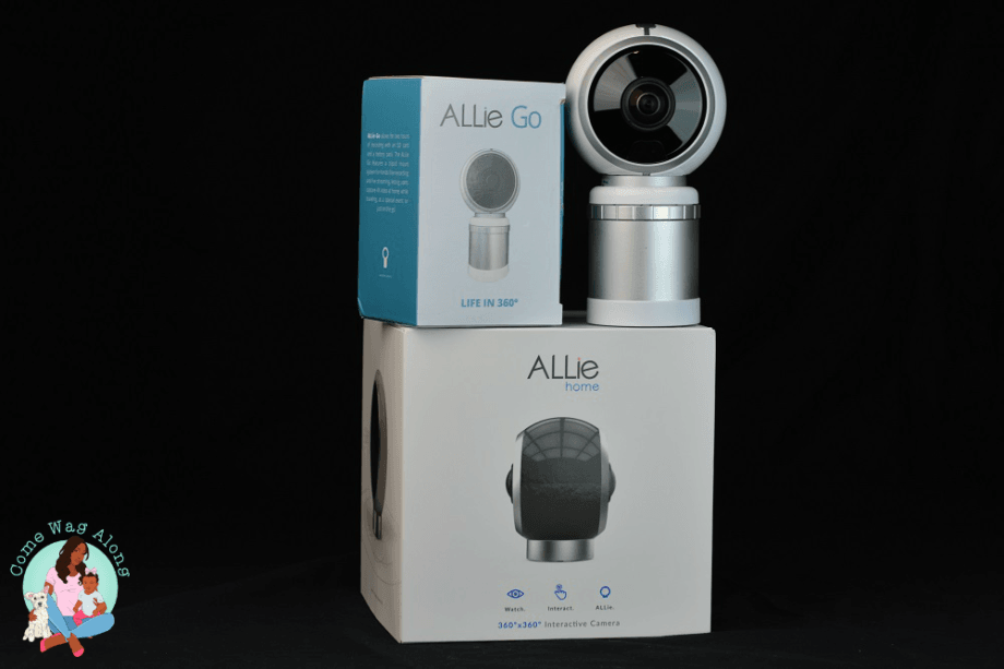 Never Miss a Moment with the ALLie 360 Cam + Giveaway - ComeWagAlong.com