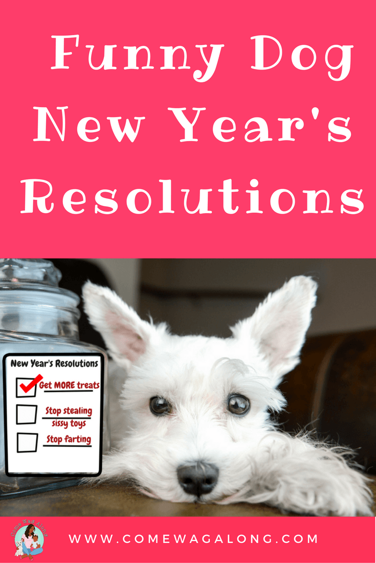 Funny Dog New Year's Resolutions - ComeWagAlong.com