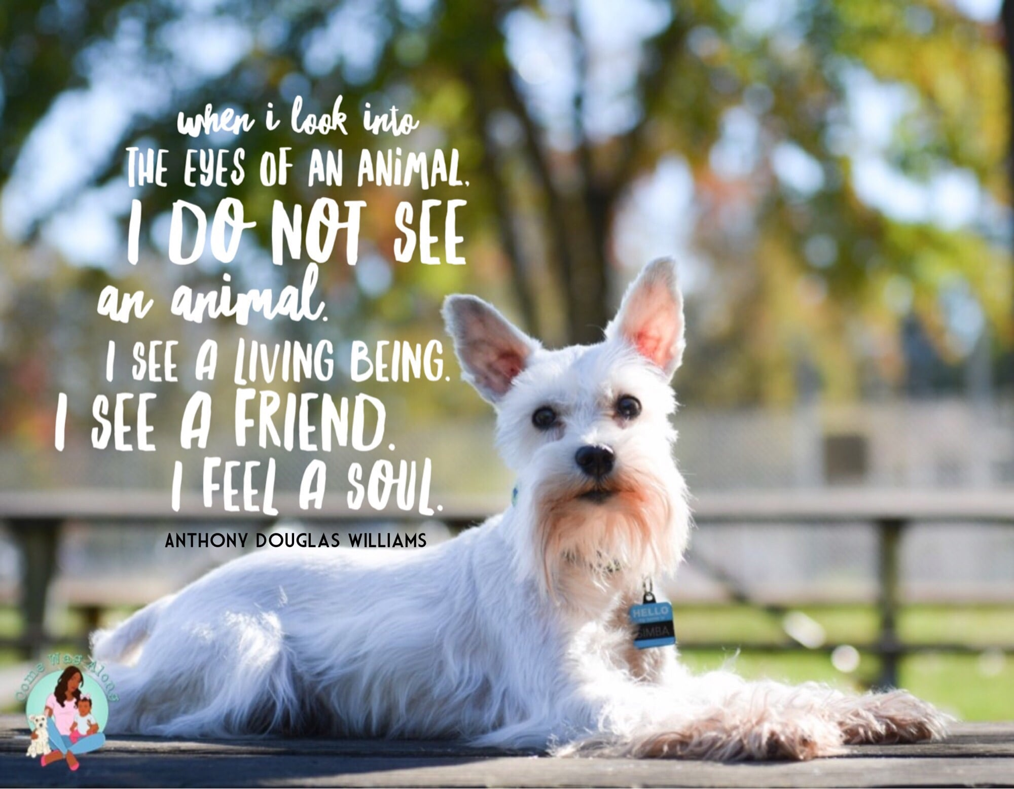 Dog Quotes for Dog Lovers - Come Wag Along