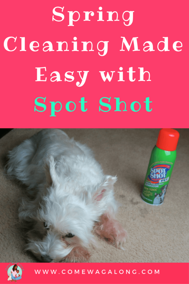 Spring Cleaning Made Easy with Spot Shot - ComeWagAlong.com