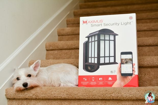 Smart Security Light - Home Security