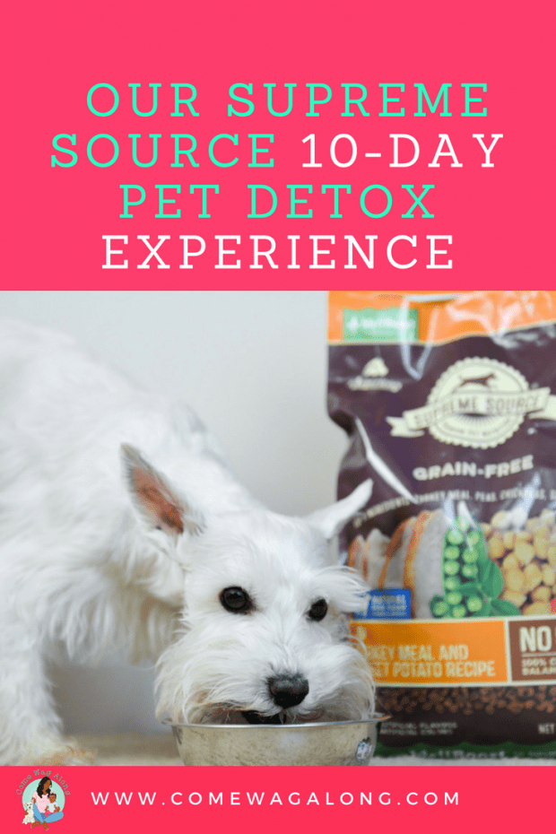 Supreme Source Pet Detox Experience