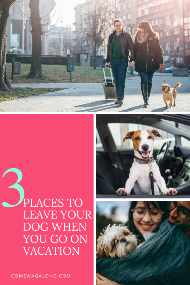 3 Places to Leave Your Dog When You Go on Vacation - ComeWagAlong.com