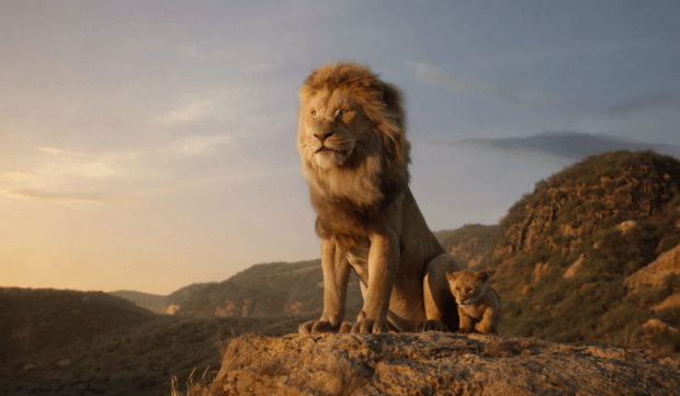 lion king live action simba mufasa
