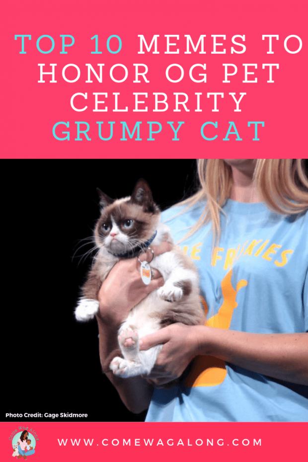 Grumpy Cat Memes Pin