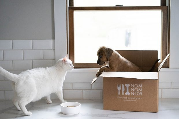 NomNomNow Fresh Food for Pets