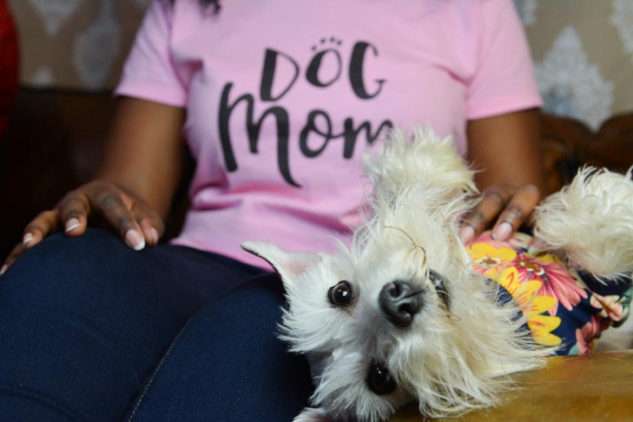 dog mom giveaway