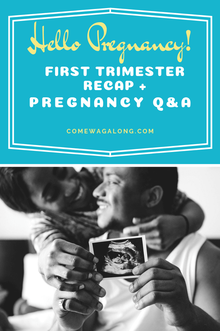 First Trimester Pregnancy Recap