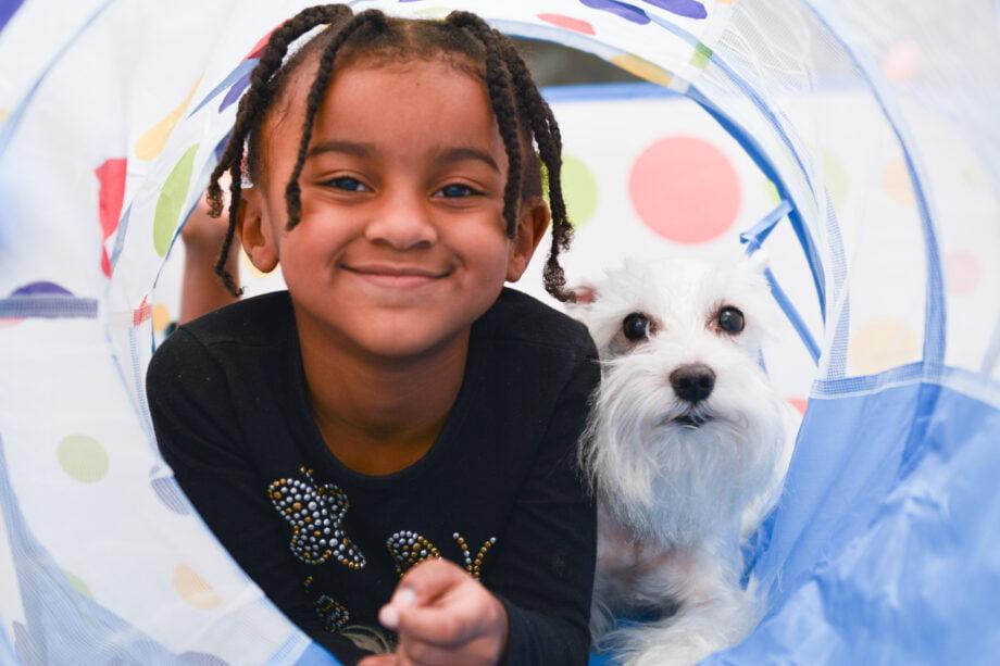 Dog Tunnel - Dog and Kids Playtime