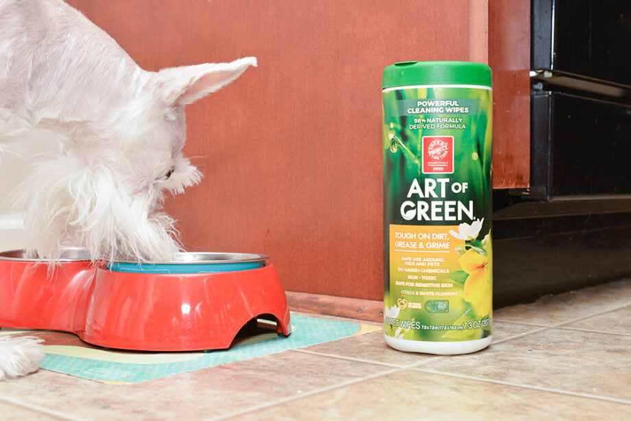 Cleaning Dog Bowls and Placemats - Art of Green