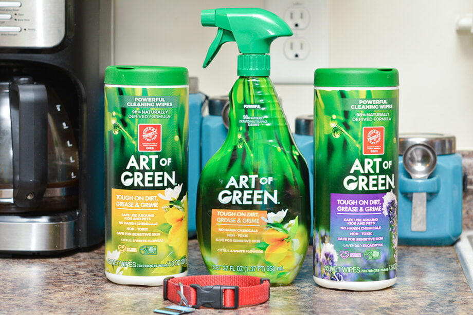 Dog Friendly Cleaning Products - Art Of Green
