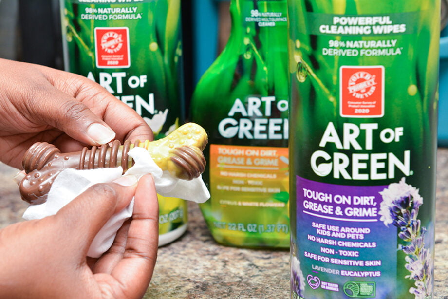 How to Clean Dog Toys - Art of Green