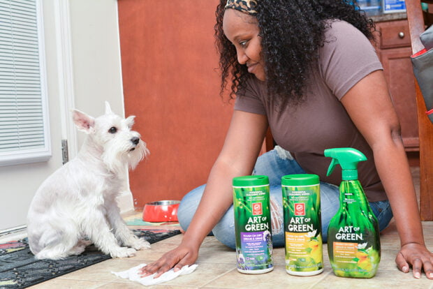 Pet Friendly Cleaning Products - Art of Green