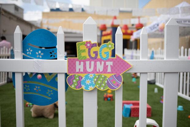 Easter Egg Hunts for Dogs
