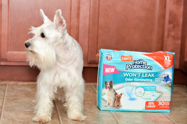 Hartz Home Protection Odor Eliminating Mountain Fresh Dog Pads